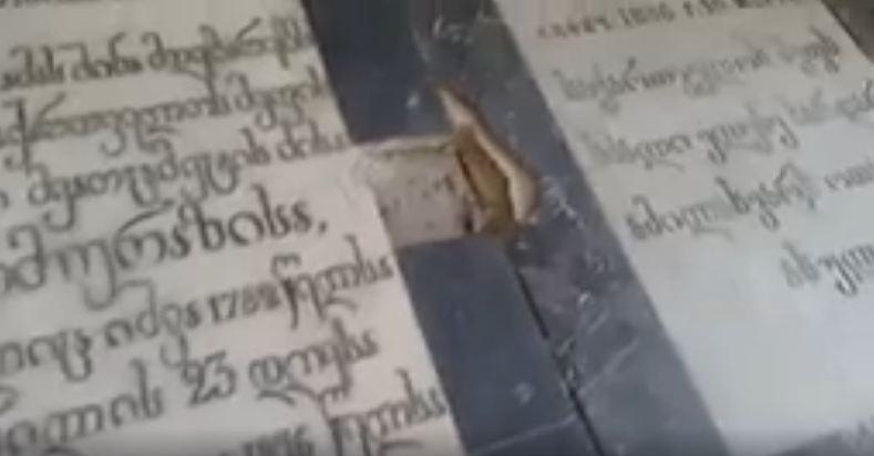 Photo of პეტერბურგში აღმოჩენილი ქართული სამეფო კარის დიდებულთა ნეკროპოლი – 38 სამარხი (ვიდეო)
