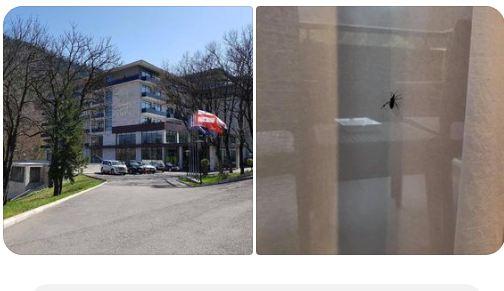 Photo of 5 ვარსკვლავიანი სიბინძურე Borjomi Likani Health & Spa- ში